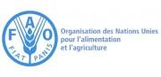 LogoFAO